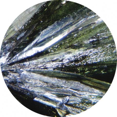 шуслерова-сол3-480x480