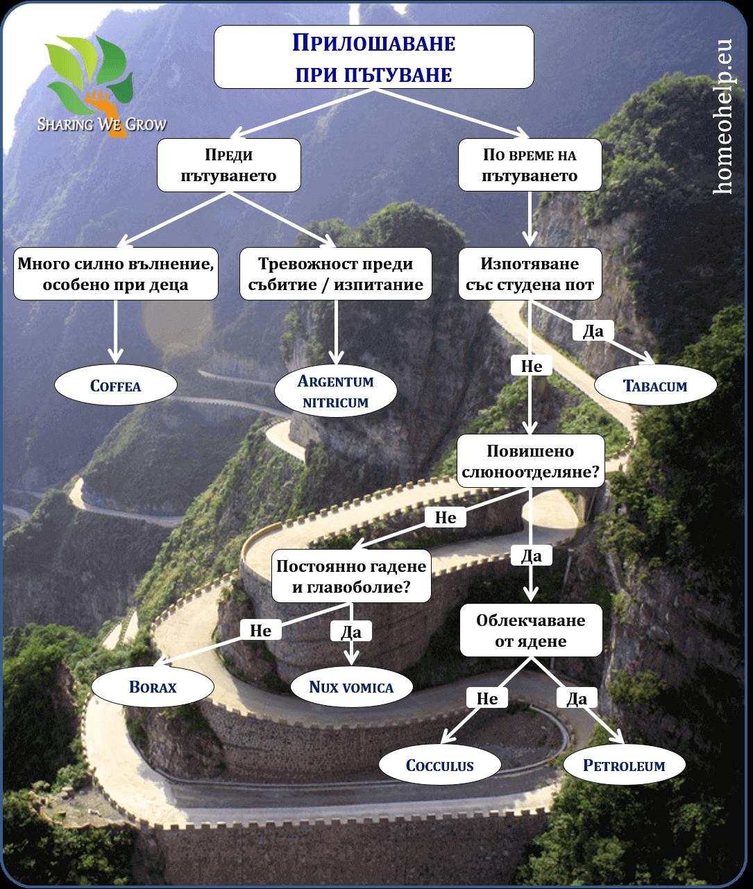 Travel Sickness Mind Map